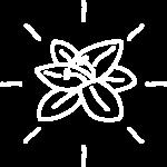 icono-flor